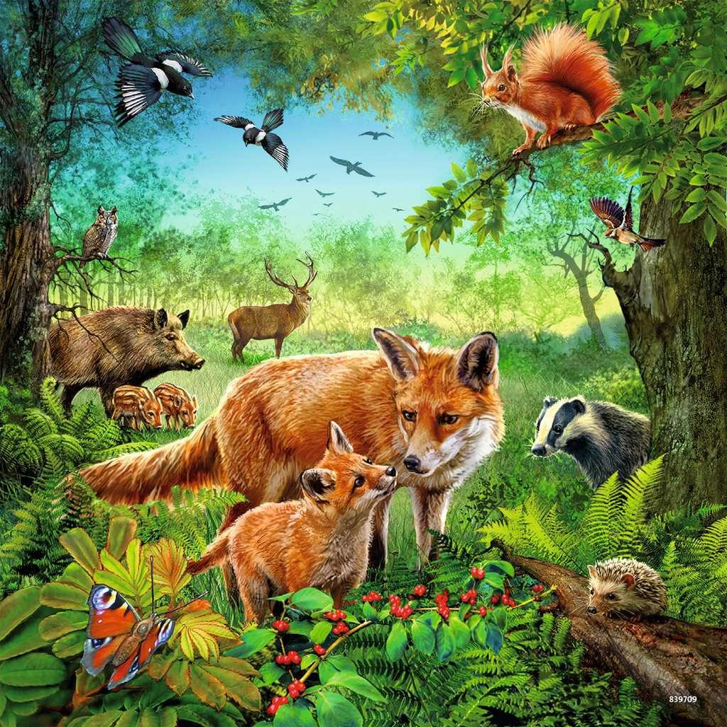 Tiere der Erde
